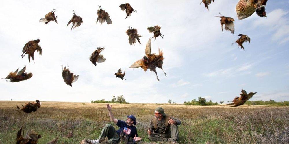 Современная охота - досуг для храбрых