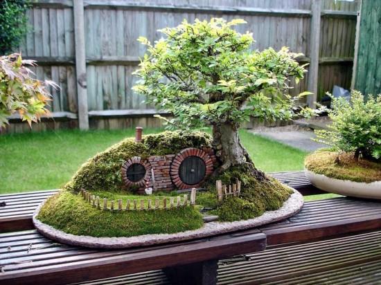 карликовых деревьев 4